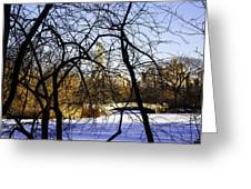 Through The Branches 3 - Central Park - Nyc Greeting Card
