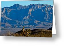 Through The Desert Greeting Card