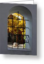 Through The Fence Window Greeting Card