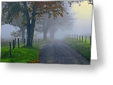 Through The Fog Greeting Card