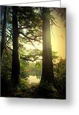 Through The Forest To The Lake Greeting Card