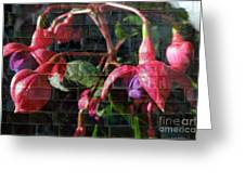 Through The Glass . Texture Greeting Card