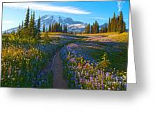 Through The Golden Meadows Greeting Card