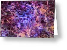 Through The Purple Rain Greeting Card