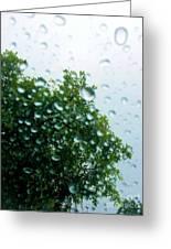 Through The Rain Greeting Card