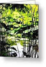Through The Reeds Greeting Card