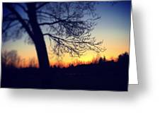 Through The Tree Greeting Card