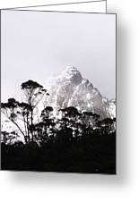 Through The Trees Come Mountains Greeting Card by Lee Stickels