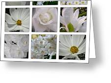 Through The White Picture Window Greeting Card