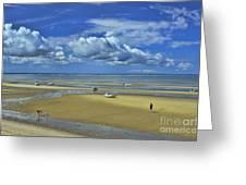 Thumpertown Beach Lowtide Greeting Card