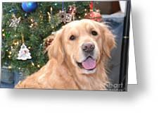 Thunder At Christmas Greeting Card