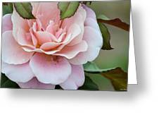 Tiara Pink Greeting Card