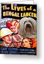 Tibetan Terrier Art - The Lives Of A Bengal Lancer Movie Poster Greeting Card