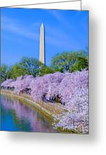 Tidal Basin And Washington Monument With Cherry Blossoms Vertical Greeting Card