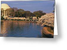 Tidal Basin Washington Dc Greeting Card