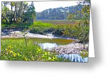 Tidal Creek In The Savannah Greeting Card