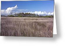 Tidal Marsh On Roanoke Island Greeting Card