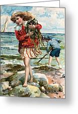Tide Pools At The Beach Greeting Card