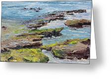 Tide Pools Revealed   Cardiff Greeting Card