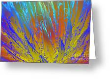 Tie Dye Agave Greeting Card