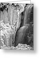 Tiffany Falls - A Study In Black And White Greeting Card
