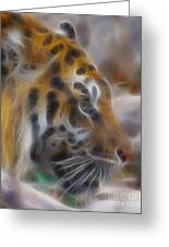 Tiger-5344-fractal Greeting Card
