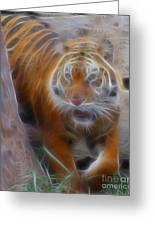 Tiger-5362-fractal Greeting Card