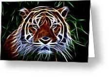 Tiger Abstact Art Greeting Card