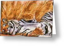 Tiger - Big Cat Greeting Card