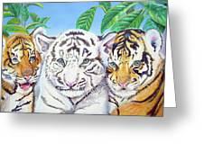 Tiger Cubs Greeting Card