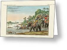 Tiger Hunting On An Indian River Greeting Card
