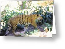 Tiger In Crayon Greeting Card by Judy  Waller