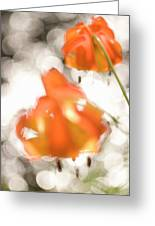 Tiger Lillies Near The Rogue Wild River Greeting Card