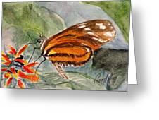 Tiger Longwing Greeting Card