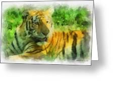 Tiger Resting Photo Art 01 Greeting Card