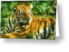 Tiger Resting Photo Art 02 Greeting Card