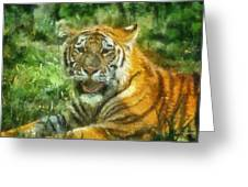 Tiger Resting Photo Art 05 Greeting Card