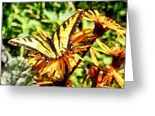 Tiger Swallowtail On Yellow Wildflower Greeting Card