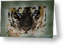 Tigerrr Greeting Card