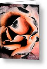 Tigers And Roses Greeting Card