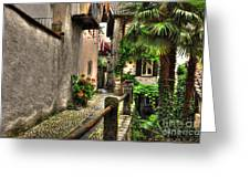 Tight Alley With Palm Trees Greeting Card