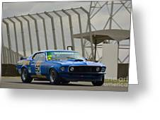 Tilley Racing Mustang Greeting Card