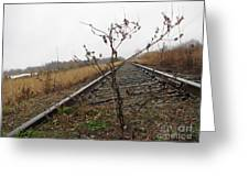 Tilted Tracks Greeting Card