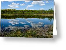 Timberland Lake Greeting Card