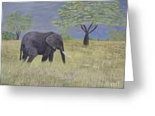 Timbo Greeting Card