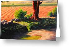 Time For Planting, Peru Impression Greeting Card