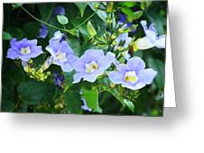Time For Spring - Floral Art By Sharon Cummings Greeting Card