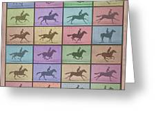 Time Lapse Motion Study Horse Color Greeting Card