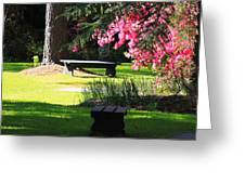 Charleston Sc Time Out Greeting Card by Ella Char