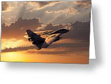 Timeless Beauty Tomcat Greeting Card